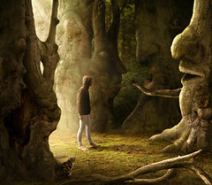 sinister trees (Mattijn) Tags: tree forest cat sinister eerie fantasy hoody pino mattijn magicrealism photocomposite