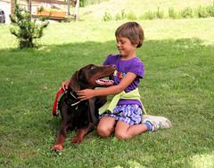 Tato e Tina (coda.allegra) Tags: dog children friendship dobermann