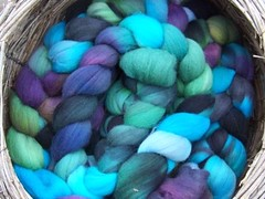VooDoo on Australian Merino Roving