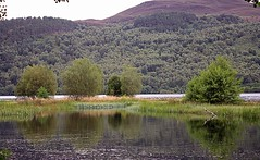 River and Loch. (northerntourer) Tags: trees reflection water river scotland loch blackwater higlands rossshire lochgarve digitalcameraclub canoneos1000d