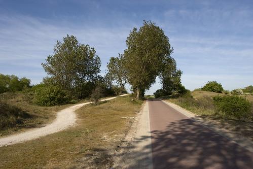 Luxury bicycle road near Den Haag