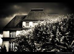 Day 2 (Percy M) Tags: sky blackandwhite house storm tree leaves clouds blackwhite nikon frankfurt haus villa thunderstorm sturm twtme