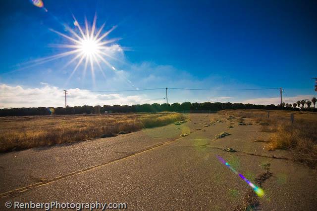 RenbergPhoto 10-16-09 Orange Groves -4