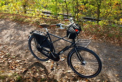 PA211359 WorkCycles Kruisframe with Carradice Longflap (macfred64) Tags: bicycle backroad fahrrad carradice dutchbike kruisframe workcyclesnl lepperlounger