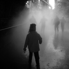 8048q (slipper buddha) Tags: bridge rust nebel steam freiburg brcke mnner europapark confrontation dampf slipperbuddha