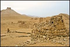 South Western Necropolis, Palmyra