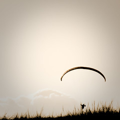 I believe I can fly (arbeer.de) Tags: sky bw grass sport clouds mono fly flying air horizon duotone void paraglider emptiness horizont gleitschirm andreasberg tccomp244
