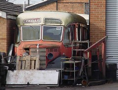 CEDAR -- (HOD55) BEDFORD 140305 (David Beardmore) Tags: bedford ob preserved westernnational duple hod55 cedarcoachesofbedford