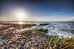 Alien Shore (Sky Noir) Tags: travel sunset usa sun seascape water reflections landscape rising bay virginia scenery surf waves tide shoreline scenic erosion shore va hampton chesapeake hdr levels hamptonroads tidewater skynoir bybilldickinsonskynoircom