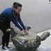 Taipei Zoo Turtle Statue