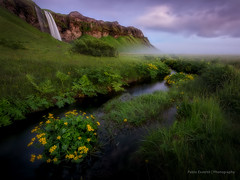 Seljalandsfoss (esvertit) Tags: iceland water waterfall green foliage river sky clouds midnightsun landscape nature