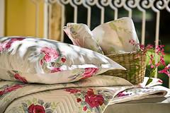 PRODUÇÃO DE OBJETO (bellpicosque) Tags: flores brasil sp decoração campinas detalhe ambiente externo travesseiros decorada decorao fazendapaudalho kacyumara