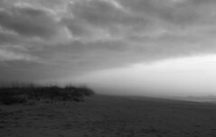 Beach Front (cormend) Tags: statepark sky blackandwhite bw seascape beach nature clouds landscape sand nikon triangle dunes southcarolina front huntingtonbeach d80 cormend