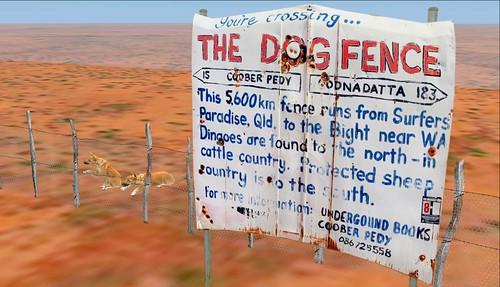 Aussie Wild Dogs