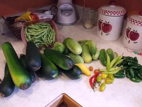 Garden Bounty 7-12-09