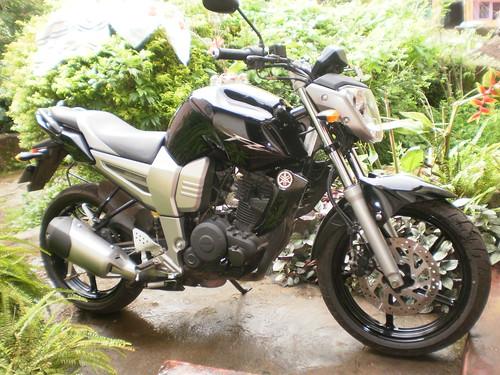 Yamaha F16