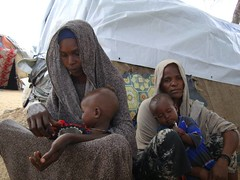 UNHCR NEWS STORY: Displaced by conflict, families in Somalia often left divided (UNHCR) Tags: africa children women war poor conflict shelter guerre unhcr somalia insecurity hornofafrica eastafrica idps migrants humanitarianaid mogadishu diplaced conflit somalie internallydisplacedpersons afgooye personnesdplaces conflitinterne coditions