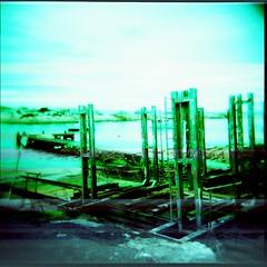 green industry (wrenswood) Tags: film holga lomography crossprocessed australia lightleaks tasmania 120mm bicheno squarephotography