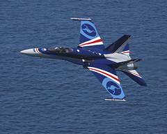 000-174-934 F/A-18 HORNET 20th Anniversary