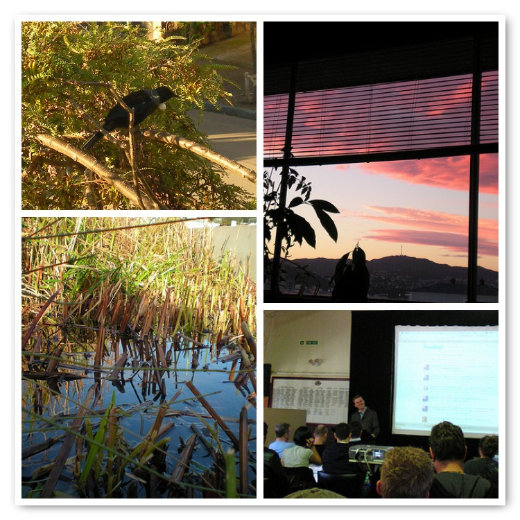 Tui, Urban Wetlands, View, WordCamp