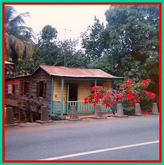 Casita Tipica de Puerto Rico - 1960's      Typical House in Puerto rico 1960's (juliealicea1947) Tags: puertorico casita pointsettias aibonito woodenframehouse casitatipica casitatipicadepuertorico