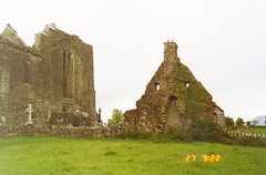 Quin Abbey _0009 (Glenister 1936) Tags: ireland abbey clare quin