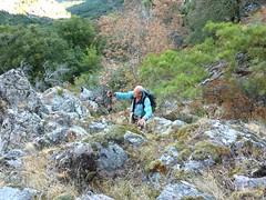 Sur la trace de montée : dans un ressaut en RD du ruisseau sous Bocca Laggera
