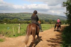 Hillcrest Equestrian Centre (Ballyhoura) Tags: county cork centre country co equestrian limerick hillcrest galbally ballyhoura touristr