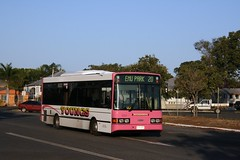 Young's of Rockhampton, Queensland, Australia. Dennis Dart 918-EHT in a street near Rockhampton Railway Station. (express000) Tags: queensland rockhampton queenslandaustralia dennisdart rockhamptonqueenslandaustralia dennisbus busesinaustralia australianbuses rockhamptonaustralia youngsbusco youngsofrockhamptonqueenslandaustralia youngsofrockhamptonqueensland rockhamptoncity