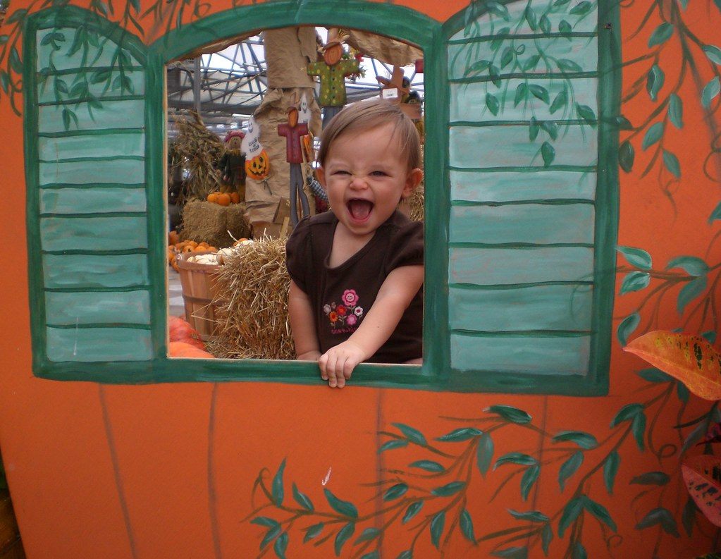 baby girl toddler pumpkin patch