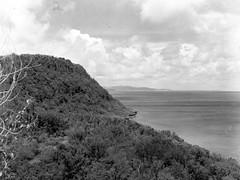George Tweed's View