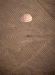 Soyuz TMA-14 Lands at Arkalyk, Kazakhstan (NASA, International Space Station Science, 10/11/09) [EXPLORED] (NASA's Marshall Space Flight Center) Tags: nasa kazakhstan internationalspacestation arkalyk soyuzcapsule expedition20 soyuztma14 stationscience crewearthobservation expedition20landing
