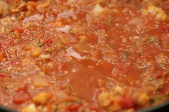 Tempeh Lasagne 7