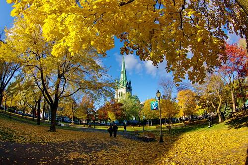 La cathédrale dans son écrin doré