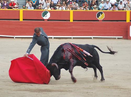 Derechazo de Javier Osores en Acho