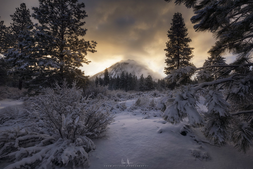 Winter at Black Butte