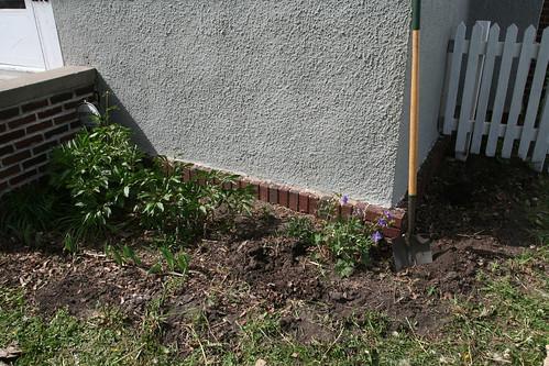 'Before' Front Garden