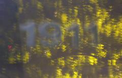 DSCN1444_cropped.jpg