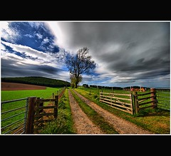 Auld Rural Road - Tayside Scotland (Magdalen Green Photography) Tags: green field scotland vibrant fences fields dramaticsky tayside hdr coolgreen vanishingroad dsc0103 iaingordon auldruralroad