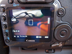Tip: Canon 5D MarkII - Video Locks Up/Freezing (Solution)