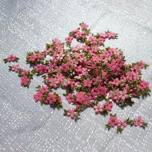 more pink daisies