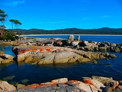 IMG_5804 (billdog) Tags: australia tasmania tassie downunder