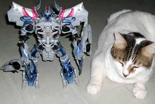 Megatron and Mat