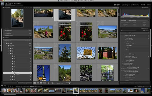 Nikon D5000 RAW / NEF files in Adobe Lightroom 2.4