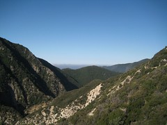 Canyon below Switzer.jpg (Altacanyada, California, United States) Photo