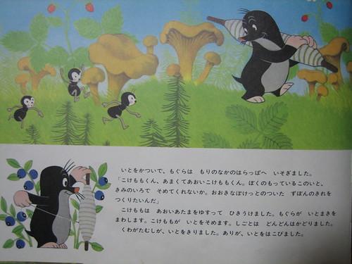 kinoko200981 011