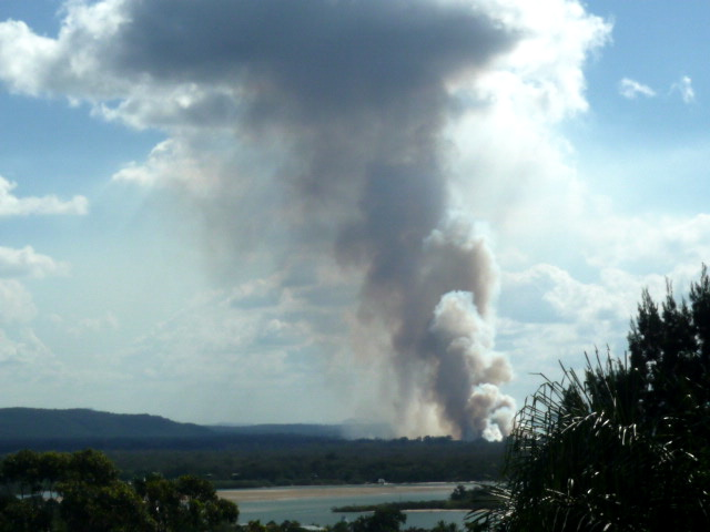 Noosa bushfire