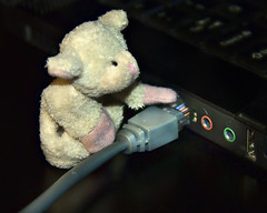 If I pull this out (Singing With Light) Tags: toys pull cow fridge sheep laptop nj n f u nz kiwi magnet jjp pluggedin photochallenge k200d bahbahra 2009challenge 2009challenge256 nzcowfridgemagnetjerseycitykiwilaptopmagnetictoyspentax