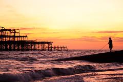 Brighton #18