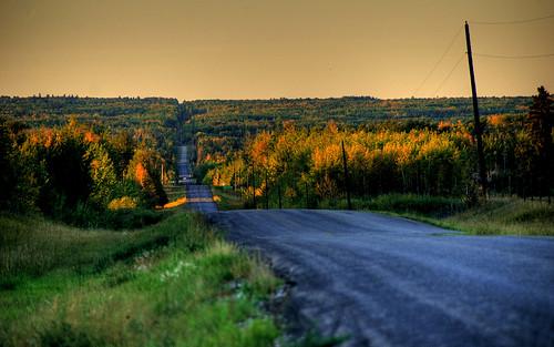 Yellowhead-Region